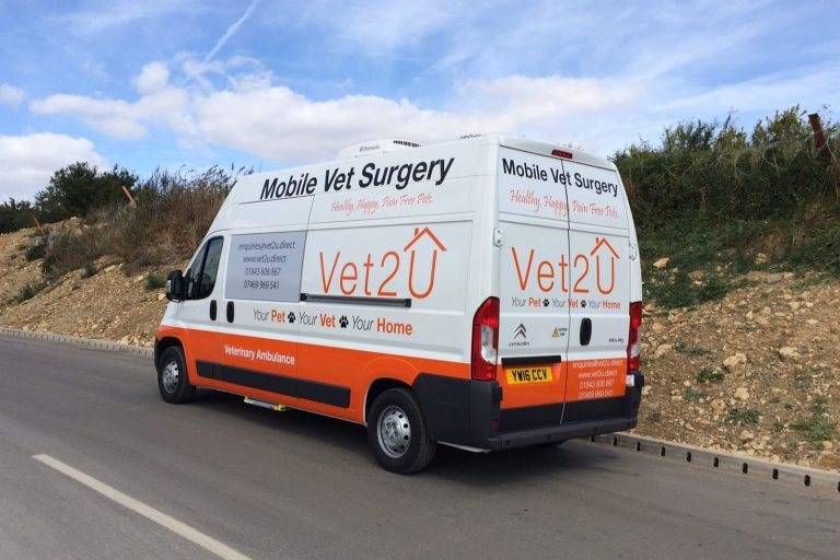 Van Conversion - Mobile Vet Surgery