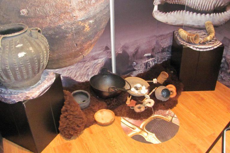 Exhibition trailer display