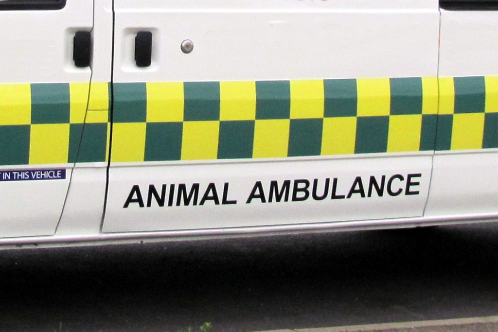 veterinary ambulance logo on side of ambulance